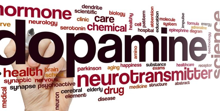 The Good Chemicals (Part 1) – Dopamine