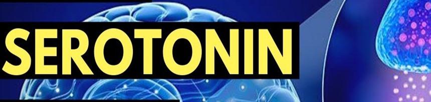 serotonin text over brain image